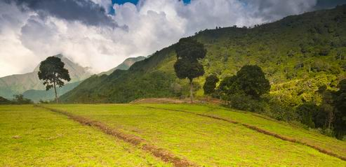 Lembah Sembalun, Lombok